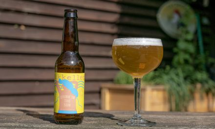Geproefd! Mikkeller Drink'in the sun